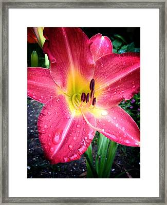 Mom's Secret Garden Framed Print