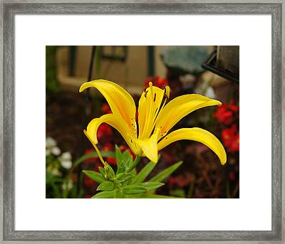 Framed Print featuring the pyrography Mom's Yellow Flower by B Wayne Mullins