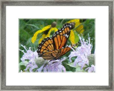 Monarch Abstract Framed Print by Gerian Dodds