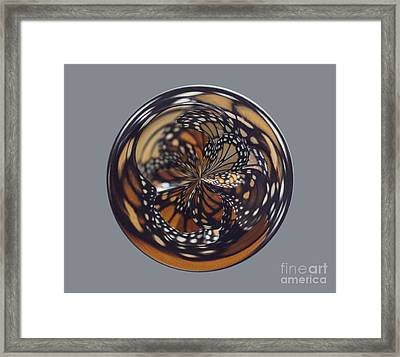 Monarch Butterfly Abstract Framed Print by Darleen Stry
