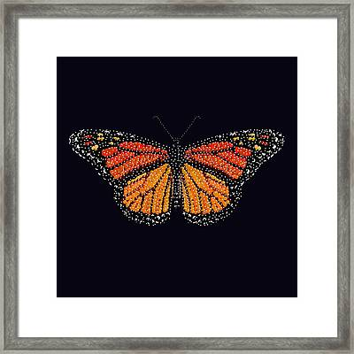 Monarch Butterfly Bedazzled Framed Print by R  Allen Swezey