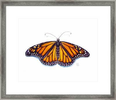 Monarch Butterfly Framed Print by Catherine Noel