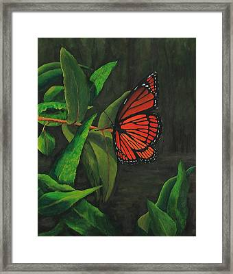 Viceroy Butterfly Oil Painting Framed Print