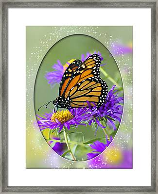 Monarch On Astor Framed Print