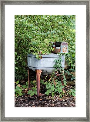 Monday Is Laundry Day Framed Print by Lynn Sprowl