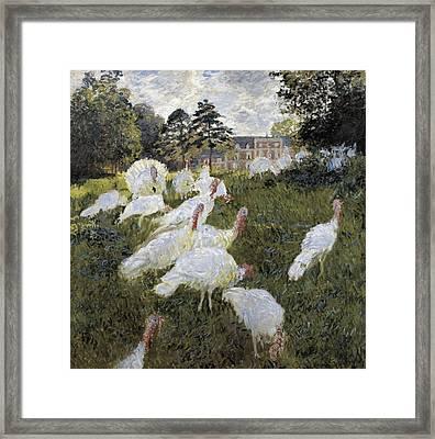 Monet, Claude 1840-1926. The Turkeys Framed Print
