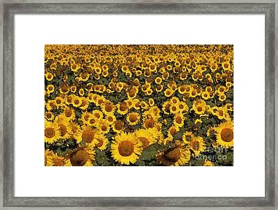 Monet Sunflowers Framed Print by David Bearden