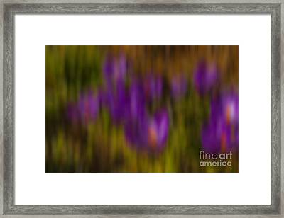 Framed Print featuring the photograph Monet's Garden by Sandi Mikuse