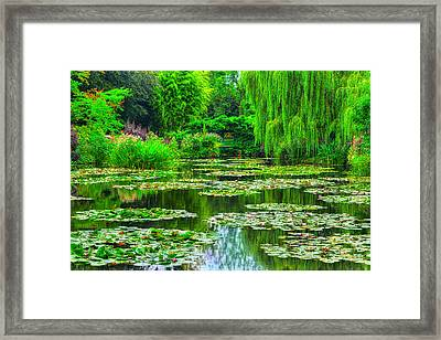 Monet's Lily Pond Framed Print