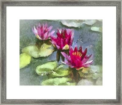 Monet's Muse Framed Print by Jill Balsam