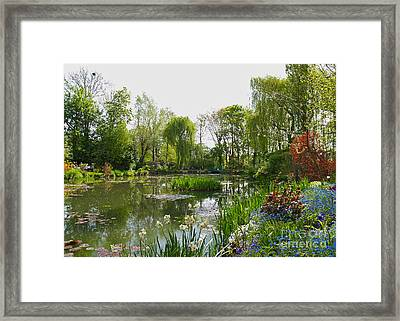 Monet's Water Garden At Giverny Framed Print by Alex Cassels
