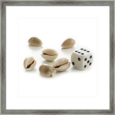 Money Cowry Sea Shells And Dice Framed Print by Science Photo Library