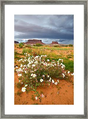Monitor And Merrimac Framed Print by Ray Mathis