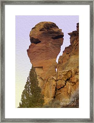Monkey Face Framed Print by Nur Roy
