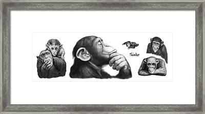 Monkey Long Drawing Art Poster Framed Print by Kim Wang