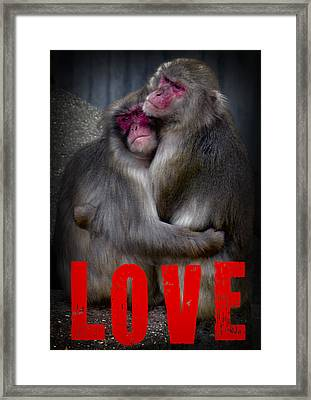 Monkey Love Framed Print