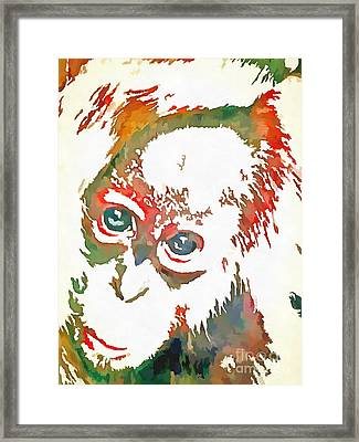 Monkey Pop Art Framed Print