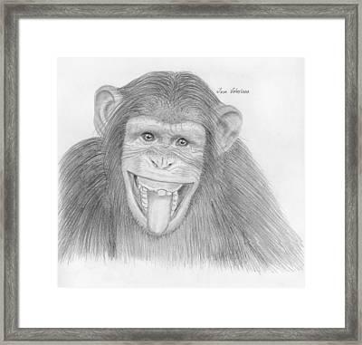 Monkeying Around Framed Print by M Valeriano