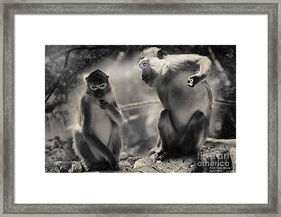 Framed Print featuring the photograph Monkeys In Freedom by Christine Sponchia