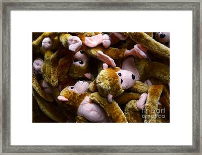 Monkeys Jumped On The Bed Framed Print by Bob Christopher