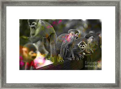 Monkeys Framed Print