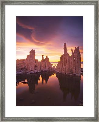 Mono Magic Framed Print by Peter Coskun