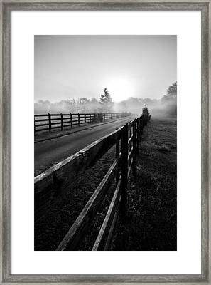 Monochrome Fog Path Framed Print by Shelby  Young
