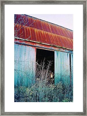 Framed Print featuring the photograph Monroe Co. Michigan Barn by Daniel Thompson