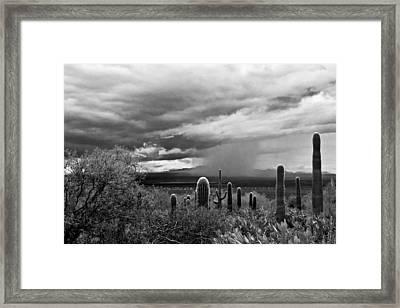 Monsoon Framed Print