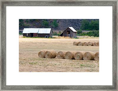 Framed Print featuring the photograph Montana Bales by Vinnie Oakes