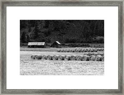 Framed Print featuring the photograph Montana Harvest B/w by Vinnie Oakes