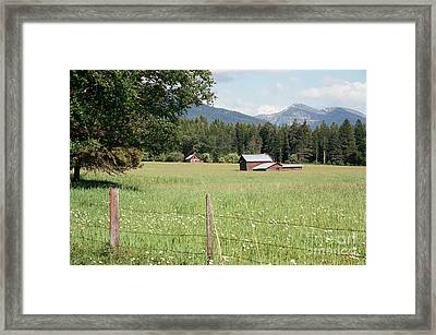 Montana Homestead Framed Print by Vinnie Oakes
