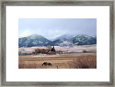 Montana Ranch - 1 Framed Print