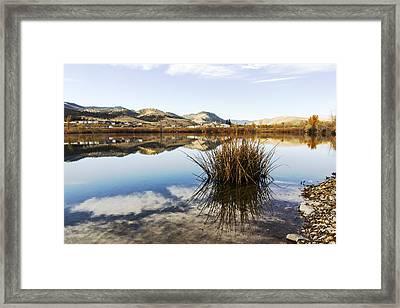 Montana Reflections Framed Print by Dana Moyer