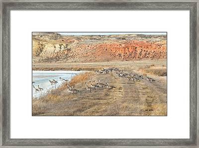 Montana Spring Thaw Framed Print by Aliceann Carlton