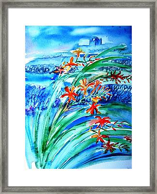 Montbretia On Inisheer  Framed Print by Trudi Doyle