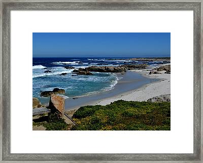 Framed Print featuring the photograph Monterey-1 by Dean Ferreira