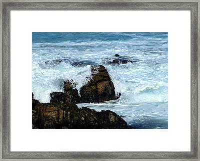 Framed Print featuring the photograph Monterey-2 by Dean Ferreira