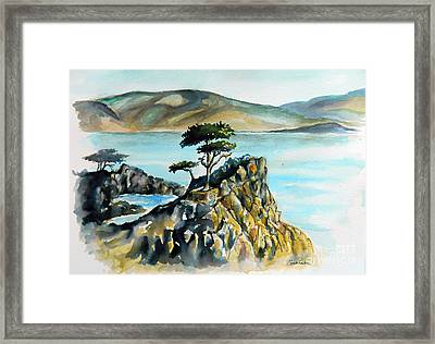 Monterey Pines Framed Print by William Reed