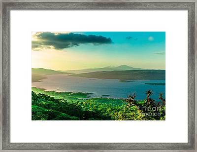 Monteverde Cloud Forest Framed Print