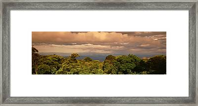 Monteverde Puntarenas Province Costa Framed Print by Panoramic Images