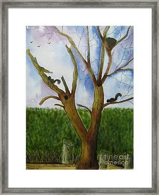 Montgomery Cove Tree Framed Print