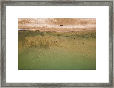 Montrose Beach Dog Park Framed Print by Adam Romanowicz