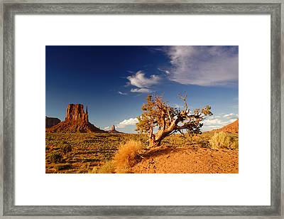 Monument Valley Lone Juniper And West Mitten. Framed Print by Silvio Ligutti