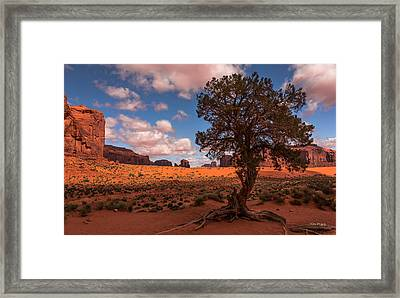 Monument Valley Morning Framed Print by Tim Bryan