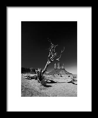 Barren Framed Prints