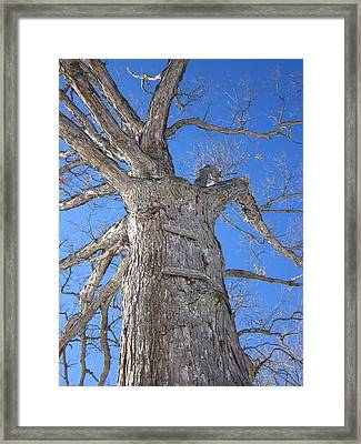 Monuments Of Hardiness Framed Print by Guy Ricketts