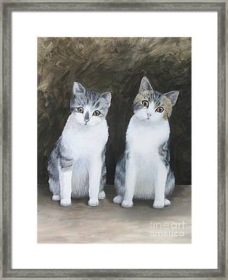 Mooch And Smooch Framed Print by Denise M Cassano