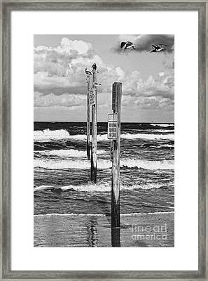 Moody Beach Day Framed Print
