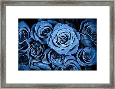 Moody Blue Rose Bouquet Framed Print by Adam Romanowicz